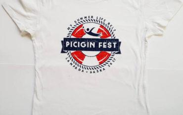 Picigin fest 2017